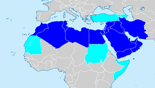 Middle East and North Africa Region (MENA Region)
